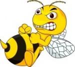 la ruche qui dit non